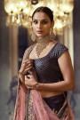 Deep Berry Silk Jacquard Lehenga Choli with Pink Net Dupatta