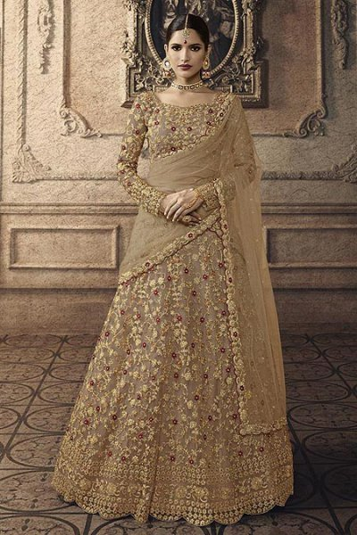 Earthy Brown Net Lehenga Choli with Embroidery