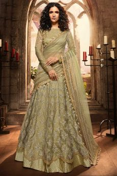 Gracious Pistachio Green Lehenga Choli with Embroidery in Net