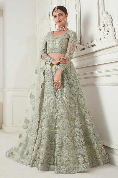 Sage Green Net Lehenga Choli with Embroidery