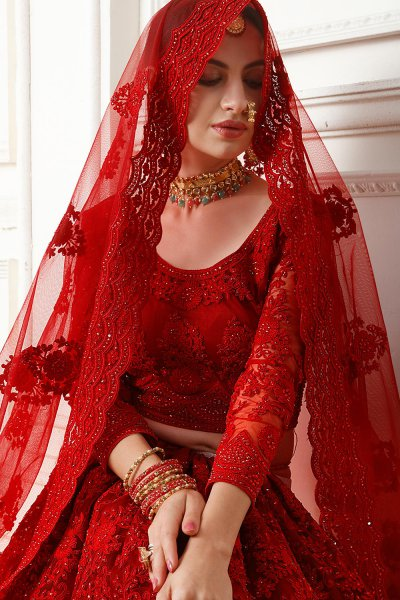 Red Net Lehenga Choli with Embroidery