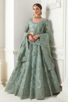 Seafoam Green Net Lehenga Choli with Embroidery