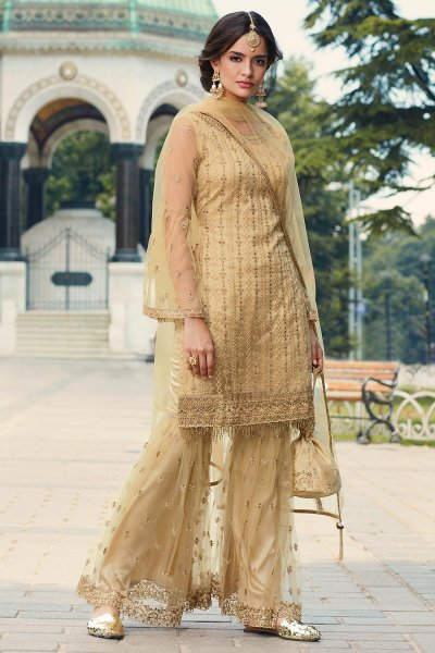 Beige Sharara Suit in Net