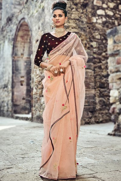 Pastel Peach Tissue Saree with Velvet Blouse