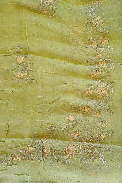 Beautiful Green Silk Salwar Kameez