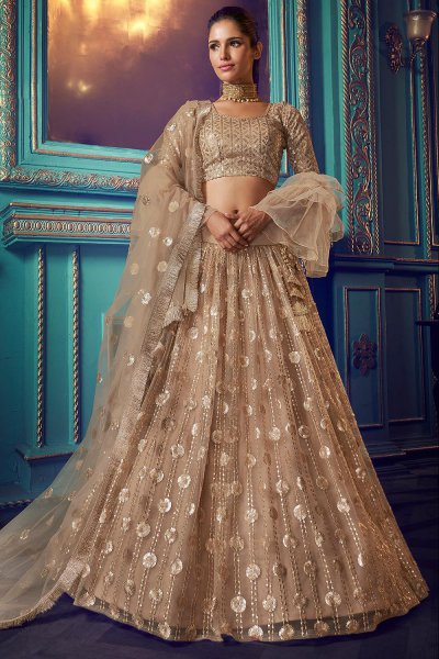 Beige Net Lehenga with Beautiful Embellishments