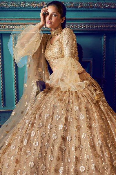 Beige Net Lehenga with Beautiful Embellishments