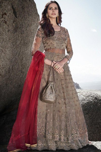Taupe Intricate Embroidered Net Anarkali with Lehenga and Elegant Potli Bag