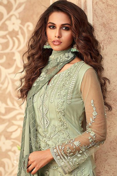 Pastel Green Net Embroidered Straight Indian Suit