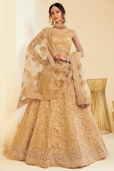 Caramel Gold Net Lehenga Choli with Embroidery
