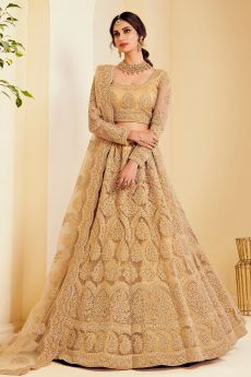 Caramel Gold Net Lehenga Choli with Embroidery