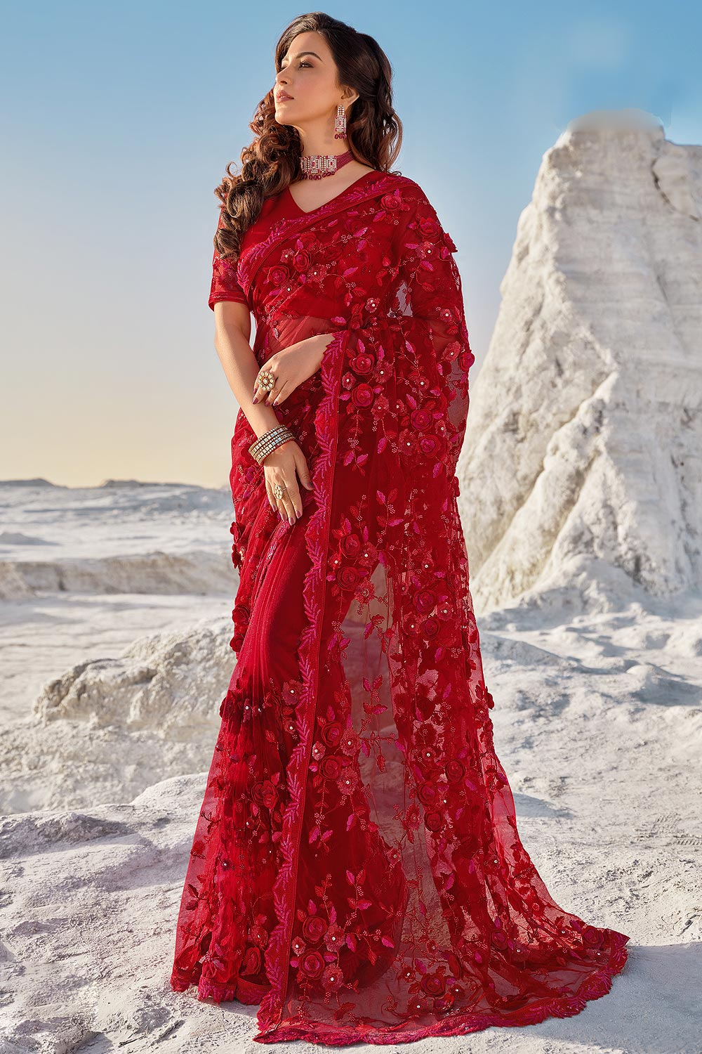 Red  Premium Net 3D Flowers Embellished Saree