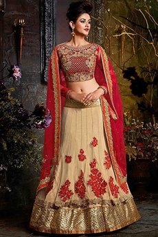 Beautiful Beige and Ruby Red Velvet & Net Lehenga Choli